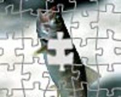 Jigsaw12s